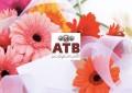 ATB : Produit net bancaire en hausse de 11,03% (fin septembre 2018)