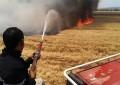 Zaghouan: 50 ha de récolte céréalière incendiés à El Fahs