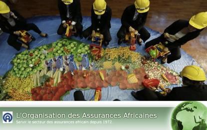 Finances: Les assureurs africains en conclave à Tunis