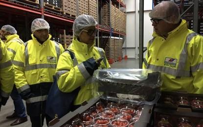 Des Tunisiens prospectent le marché des fruits et légumes frais des Pays-Bas