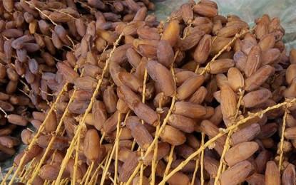 Tozeur exporte 20.000 tonnes de dattes (au 7 juillet)