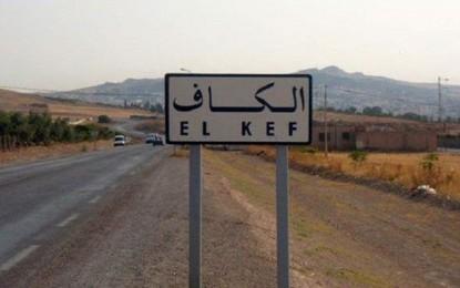 Kef : Arrestation de l'épouse d'un terroriste
