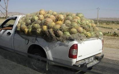 Aïn Drahem: Aucun cas d'intoxication aux melons et pastèques