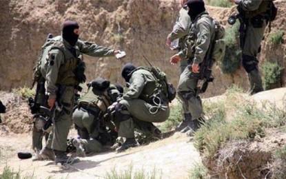 Médenine : Arrestation de 4 jihadistes revenus de Libye