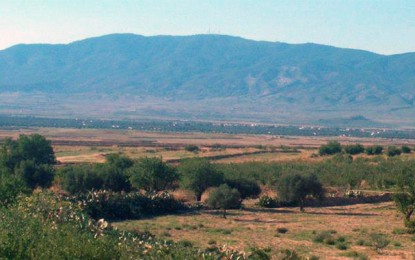 Tunisie : L'armée bombarde les sites de terroristes au Jebel Chaambi