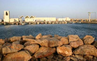 Ben Guerdane : Sauvetage de 4 baleines échouées au port El-Ketef