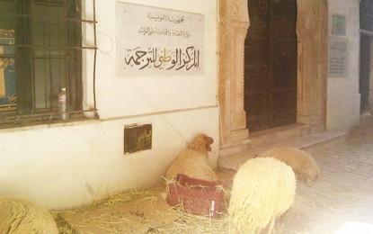 Tunis : Le Centre national de la traduction transformé en bergerie