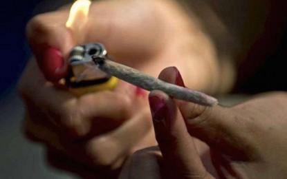 Kairouan : Une dame et une ado arrêtées pour trafic de cannabis