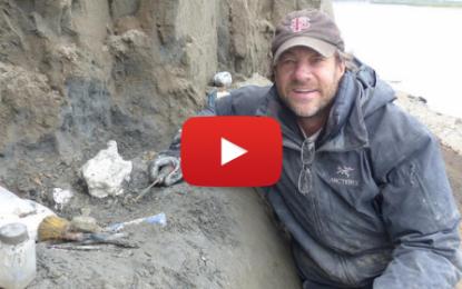 Nouvelle espèce de dinosaure découverte en Alaska