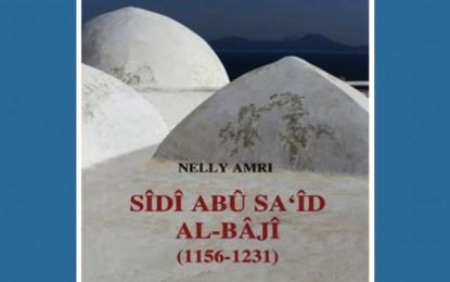 Sidi Bou Saïd sur le chemin de la lumière