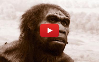 Homo naledi: une nouvelle découverte anthropologique