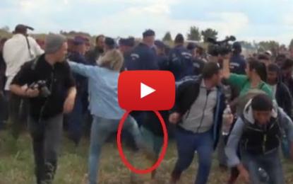 Hongrie: une employée de la télévision virée pour avoir agressé des réfugiés