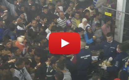 La police hongroise lance du pain aux migrants