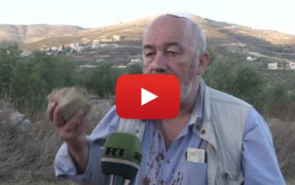 Des colons israéliens agressent des pacifistes étrangers