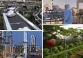 Plaidoyer pour une nouvelle politique de développement économique en Tunisie