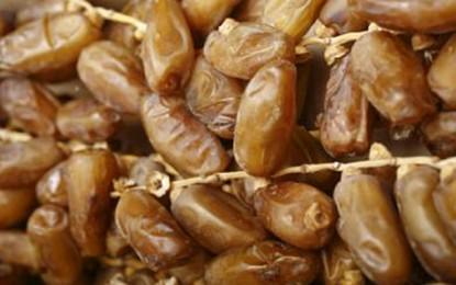 Kébili : Des opérations «concertées» pour baisser les prix de dattes