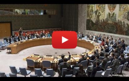 L'Onu appelle les nations à s'unir contre Daech