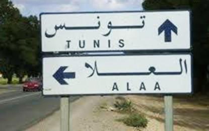 Kairouan : Un élève de 15 ans retrouvé pendu à un arbre à El-Âlaa