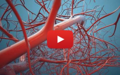 Une imprimante 3D pour vaisseaux sanguins !