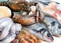 Tunisie : La valeur des exportations des produits de la pêche en hausse de 41%