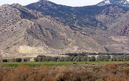Kasserine : Des armes et de l'argent dans une maison au mont Chambi