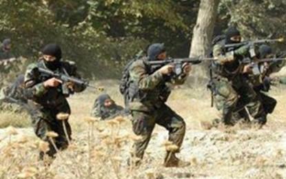 Chaambi : 3 soldats blessés dans des affrontements avec des terroristes