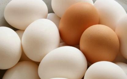 Tunisie : Le prix de 4 œufs fixé à 900 millimes, à partir d'aujourd'hui