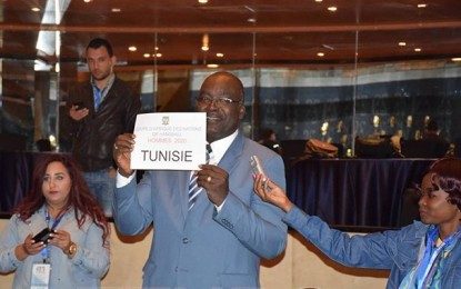 Handball : La CAN 2020 confiée à la Tunisie