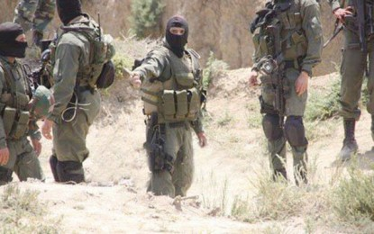 Kef : Découverte d'une arme dans un camp terroriste
