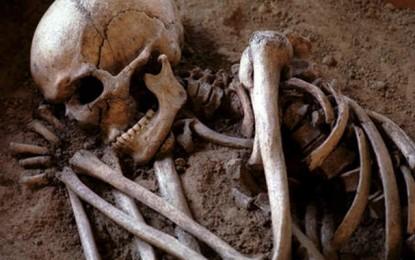 Hammamet : Découverte d'un squelette dans un amas d'ordures