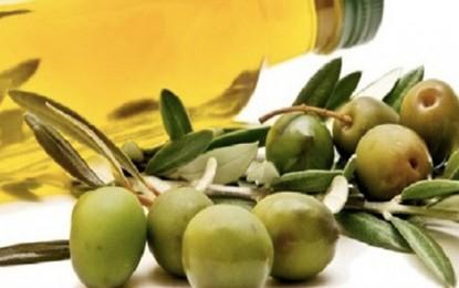 Huile d'olive: La hausse des quotas tunisiens n'affectera pas la production européenne