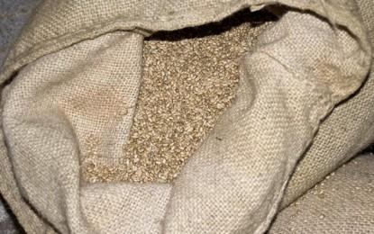 Céréales: La Tunisie importe 150.000 tonnes de blé et d'orge fourragère