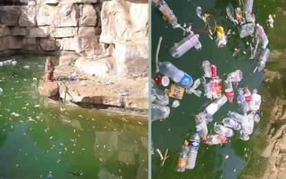 Campagne de nettoyage, demain, au Parc du Belvédère