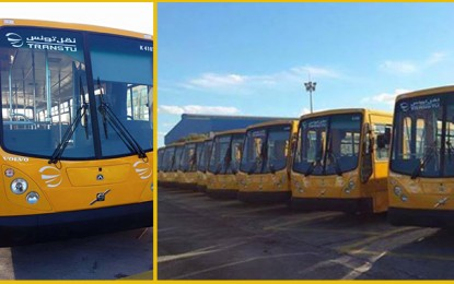 Transport : La Transtu acquiert de nouveaux bus