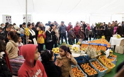 Hammamet accueille le Festival des Agrumes du 18 au 20 mars