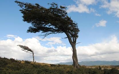 Météo : Nuages et vents soufflant à 100Km/h