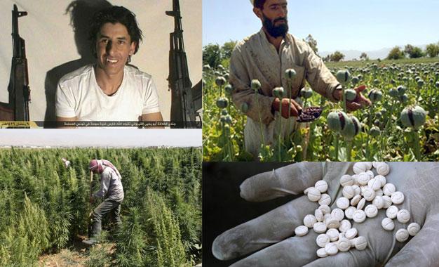Drogue-et-terrorisme