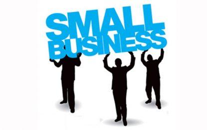 Lancement officiel du programme Advice for Small Businesses
