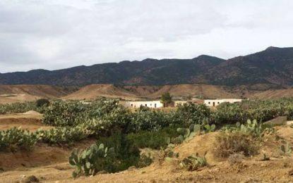 Jebel Mghila : Deux enfants blessés dans l'explosion d'une mine