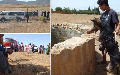 Bizerte : La chienne Lili sauve 2 femmes tombées dans un puits
