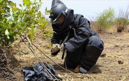 Armée tunisienne : Des équipes anti-engins explosifs improvisés