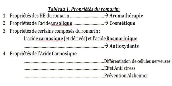 Romarin-Tabeau-1
