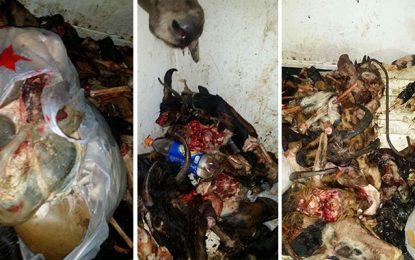 Manouba : Saisie d'une tonne de produits alimentaires périmés