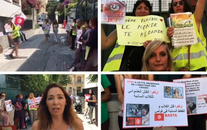 Manifestation à Nice contre l'abattage des chiens errants en Tunisie