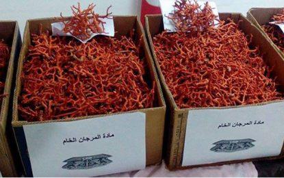 Tunis: Saisie de 80,5 kg de corail