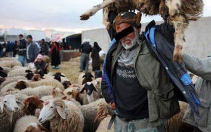 Aïd El-Adha : Aide sociale de 40 dinars pour les nécessiteux