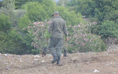 Jendouba : L'Algérie libère les 6 gardes forestiers tunisiens
