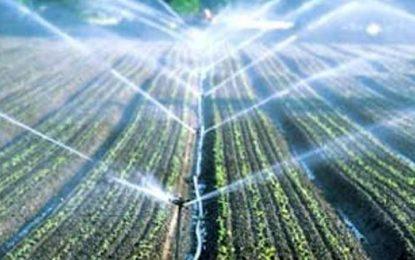 Agriculture : La Tunisie pourrait bientôt rationner l'eau d'irrigation