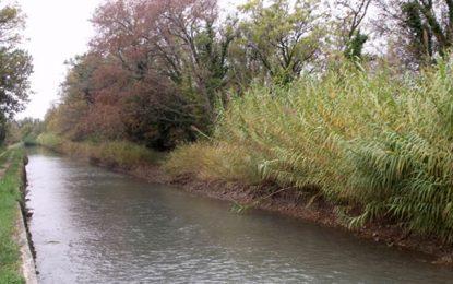 Mhamdia: Le corps d'une femme repêché dans un canal