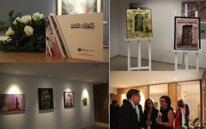Sfax : L'UBCI organise une exposition intitulée ''Harmonie''